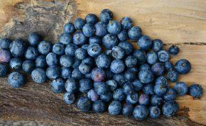 grow bluberries in home