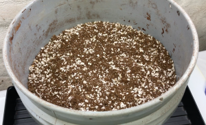 cocopeat, perlite soil composition
