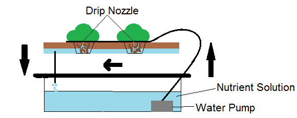 What is Hydroponics System and how does it work?
