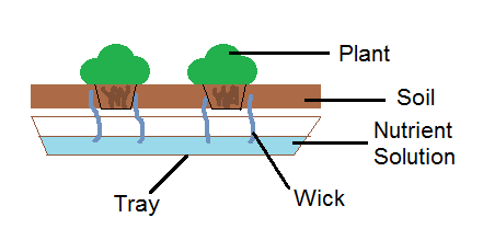 wicking system