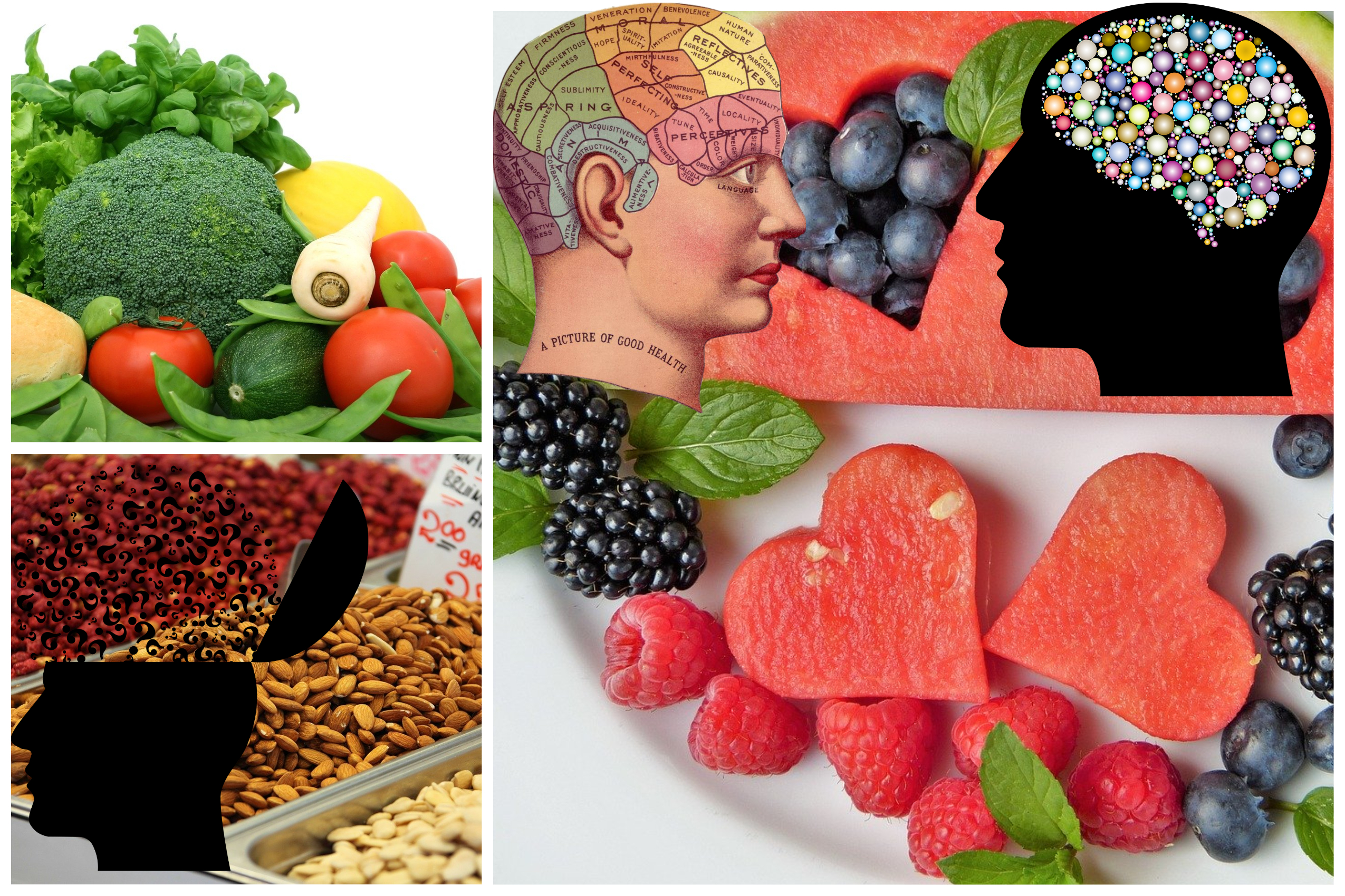 10 Best Foods To Boost Brain Health And Memory