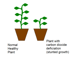 carbon dioxide deficiency