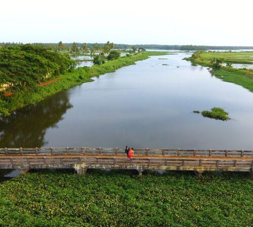 Water Purification Through Algal Treatment