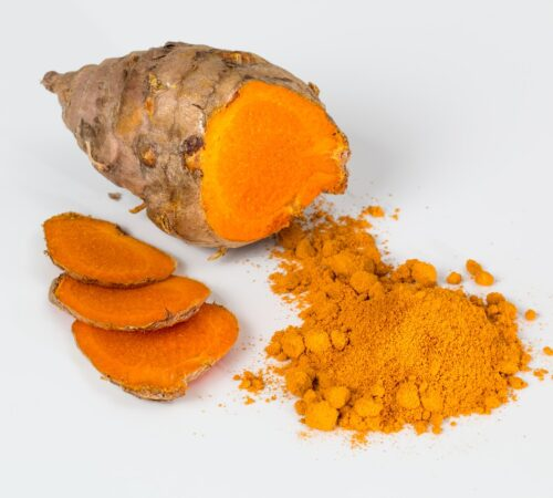 Step by Step Guide on Growing Turmeric?
